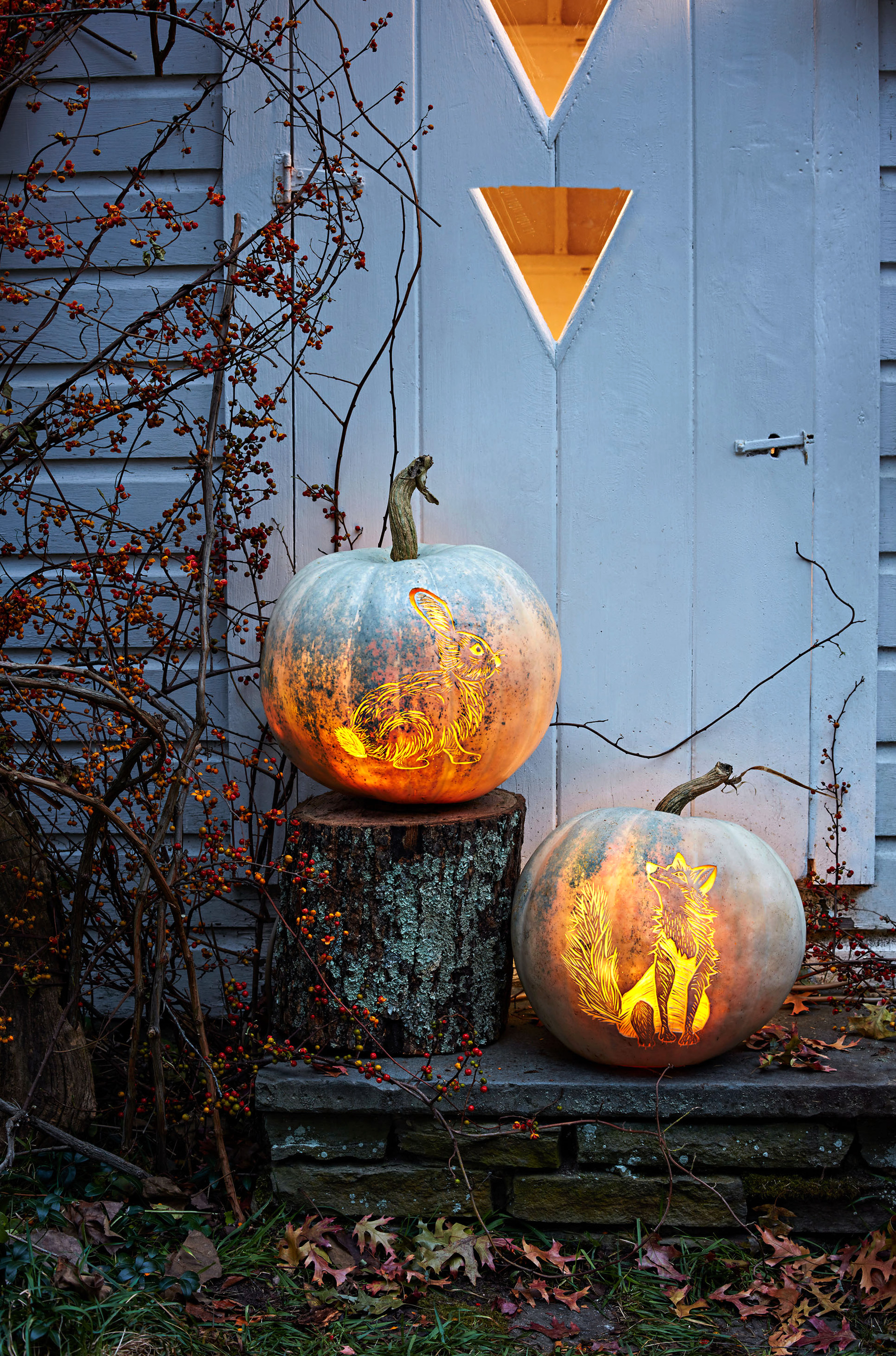 Etched Woodland Animal Pumpkins