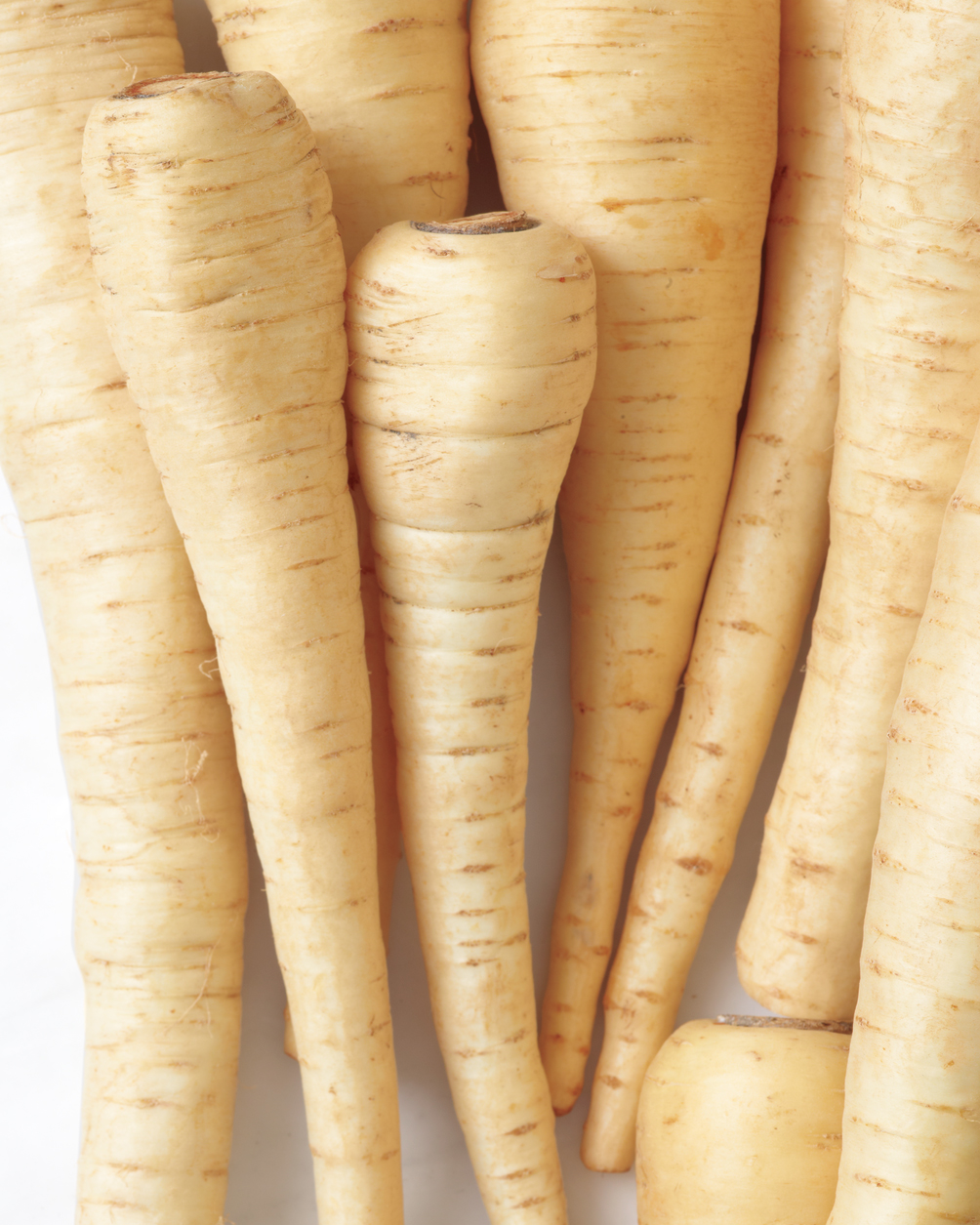 in-season-parsnips-001c-med108875.jpg