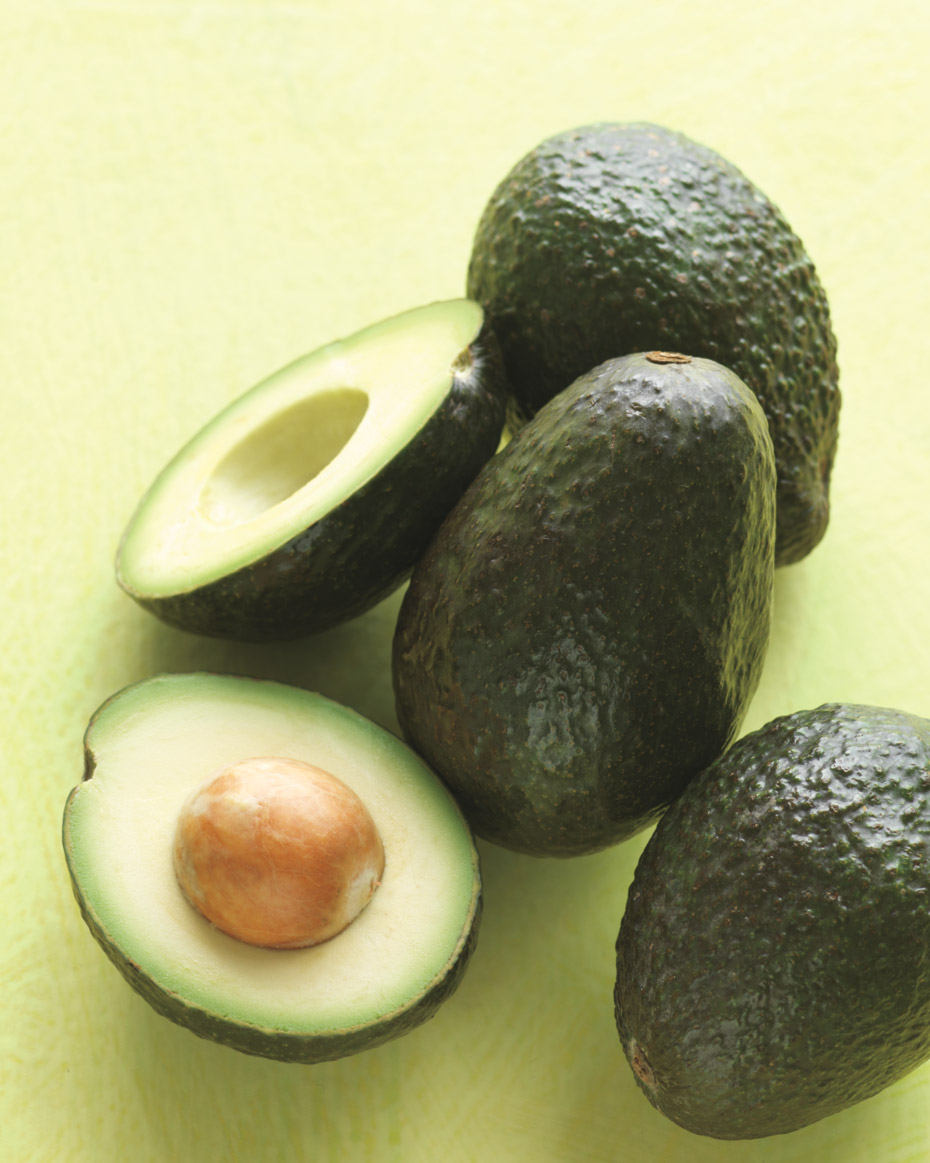 Avocado Basics