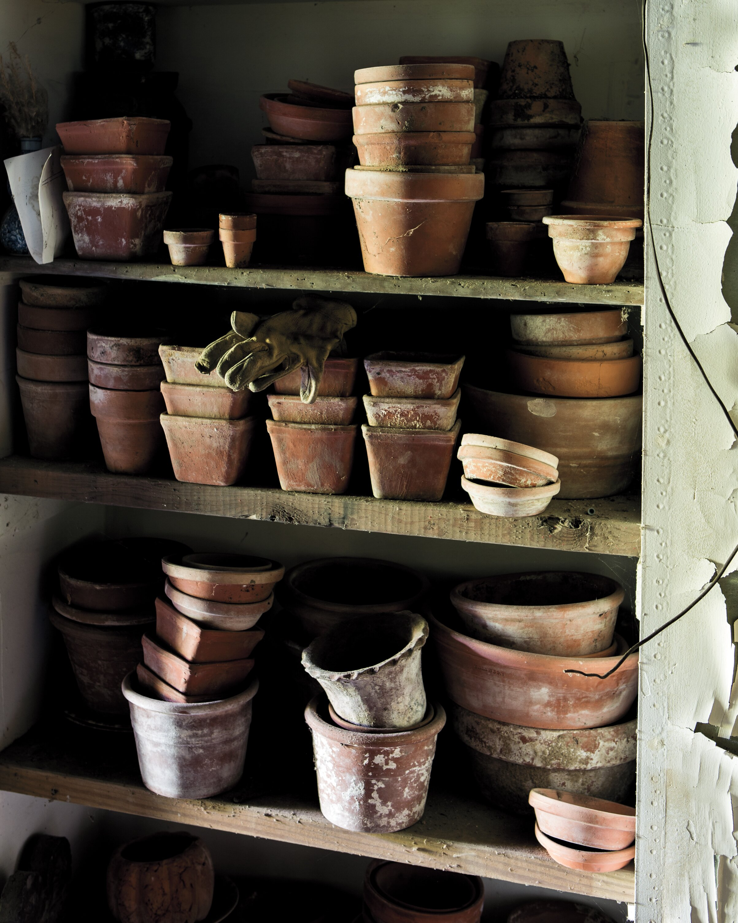 How To Quickly Age Your Terra Cotta Pots Martha Stewart