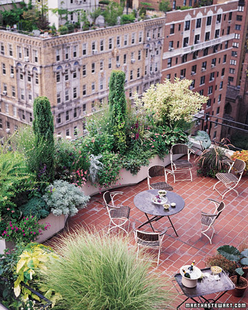 ml903_0399_roofgarden.jpg
