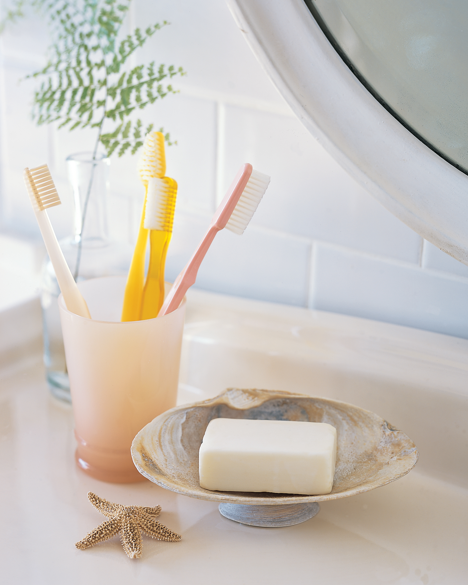 seashell soap dish in bathroom