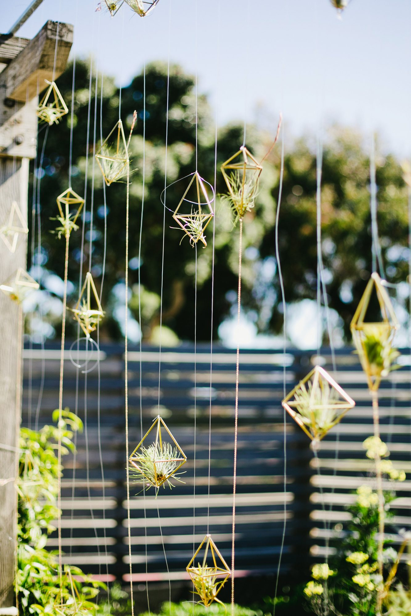 hanging plant wedding favors green