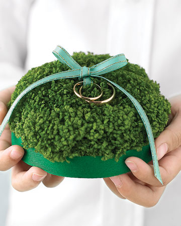 Mossy Ring Pillow