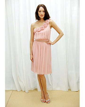 Light Pink Dress with Roses