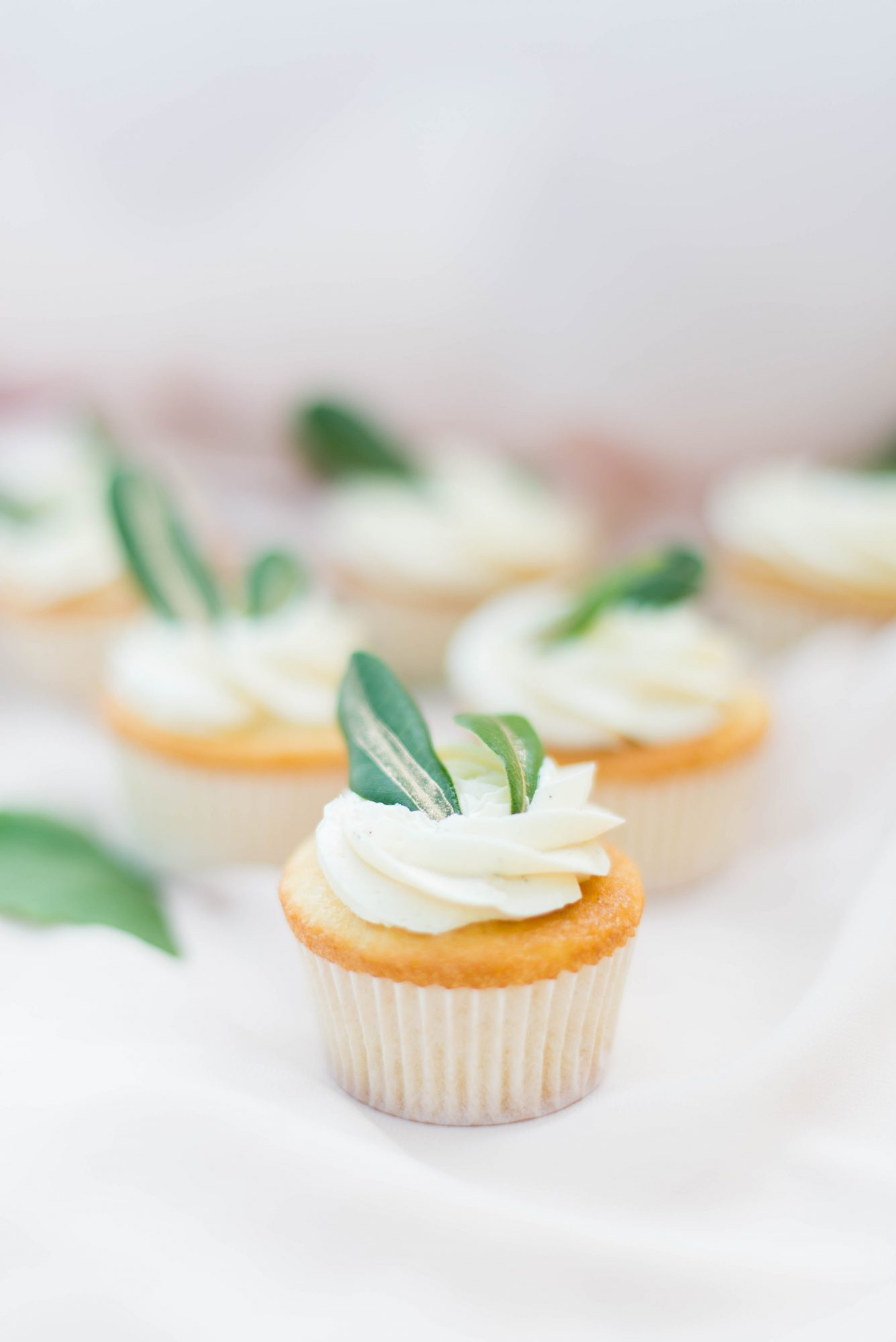 vanilla cupcakes with white frosting and green leaves