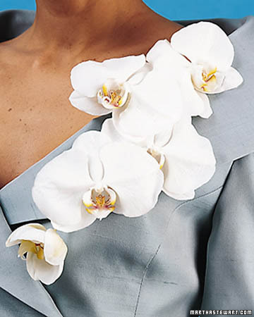 Read More About Corsages