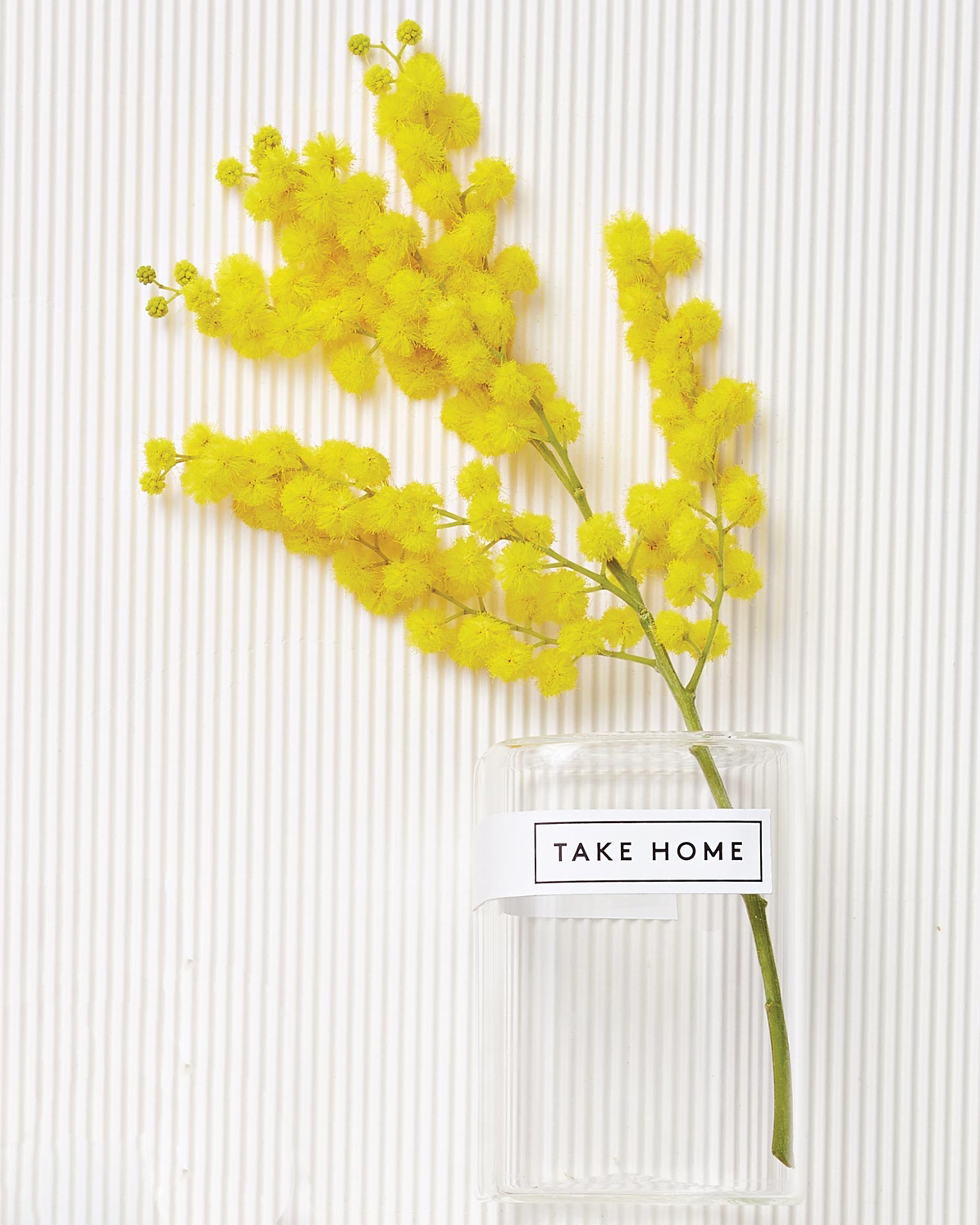 party-favors-packaging-clear-with-labels-mimosa-flowers-take-home-079-d112911.jpg