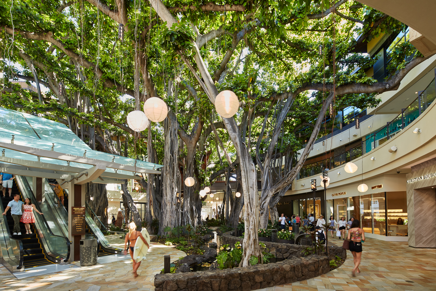 honeymooners guide hawaii international market place