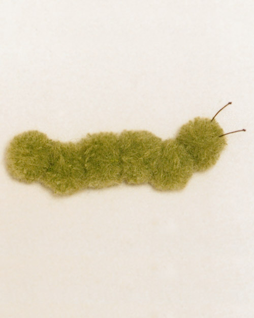 Step 6: Pom-Pom Caterpillar