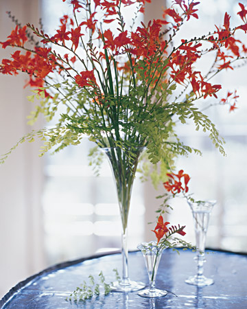Crocosmia Arrangement