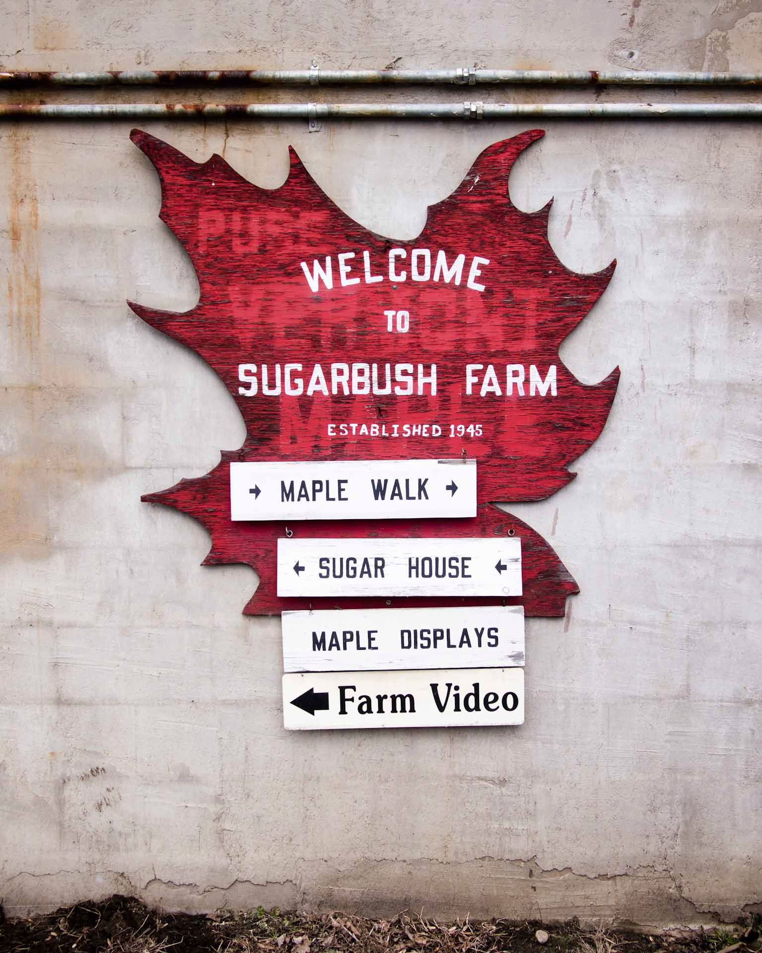 sugarbush-farm-0617-d109181.jpg