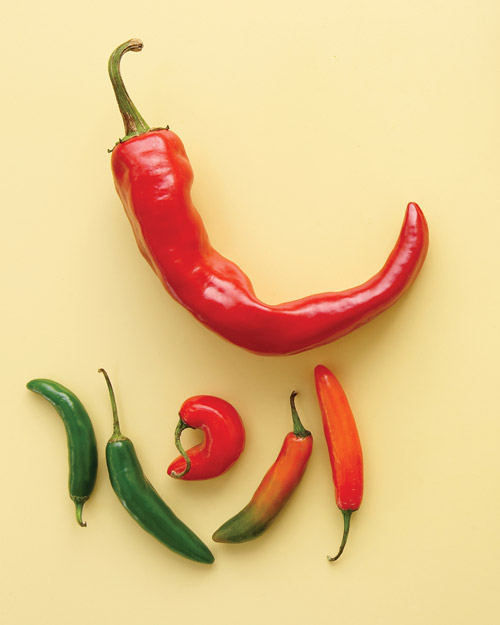 Chile Pepper Basics
