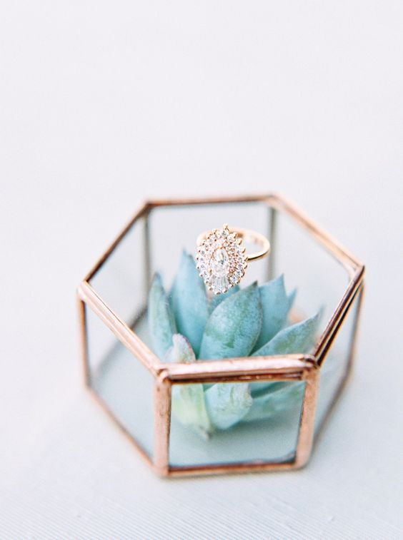 succulent ring box