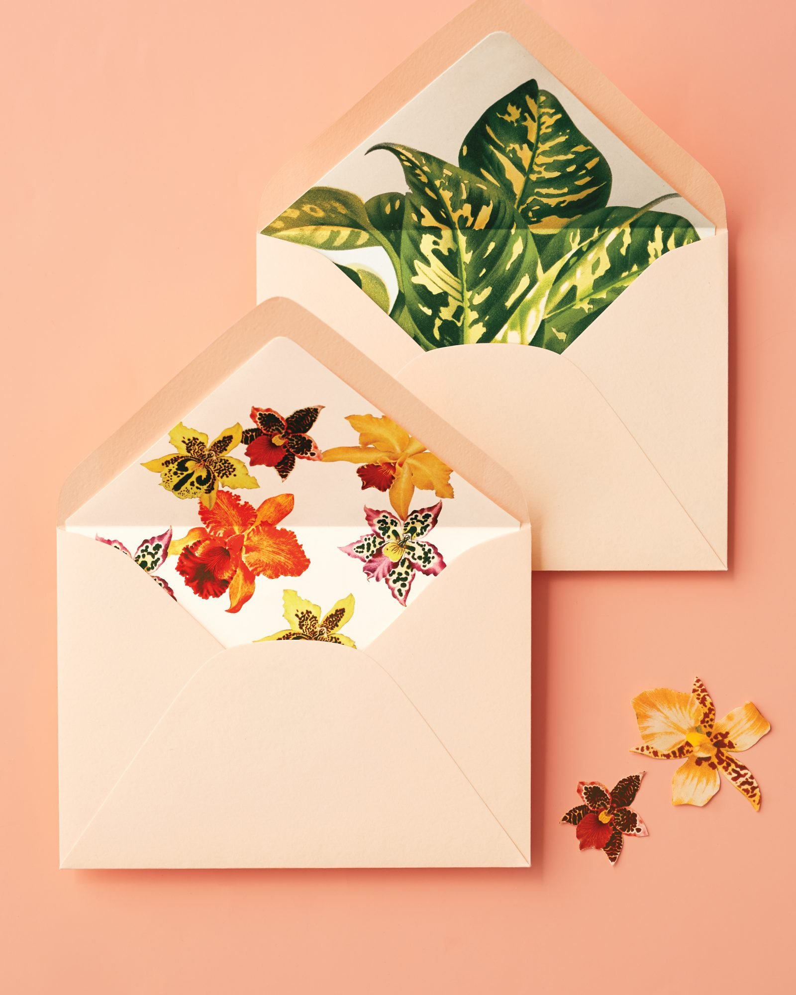 secret-source-paper-envelopes-206-d111826.jpg