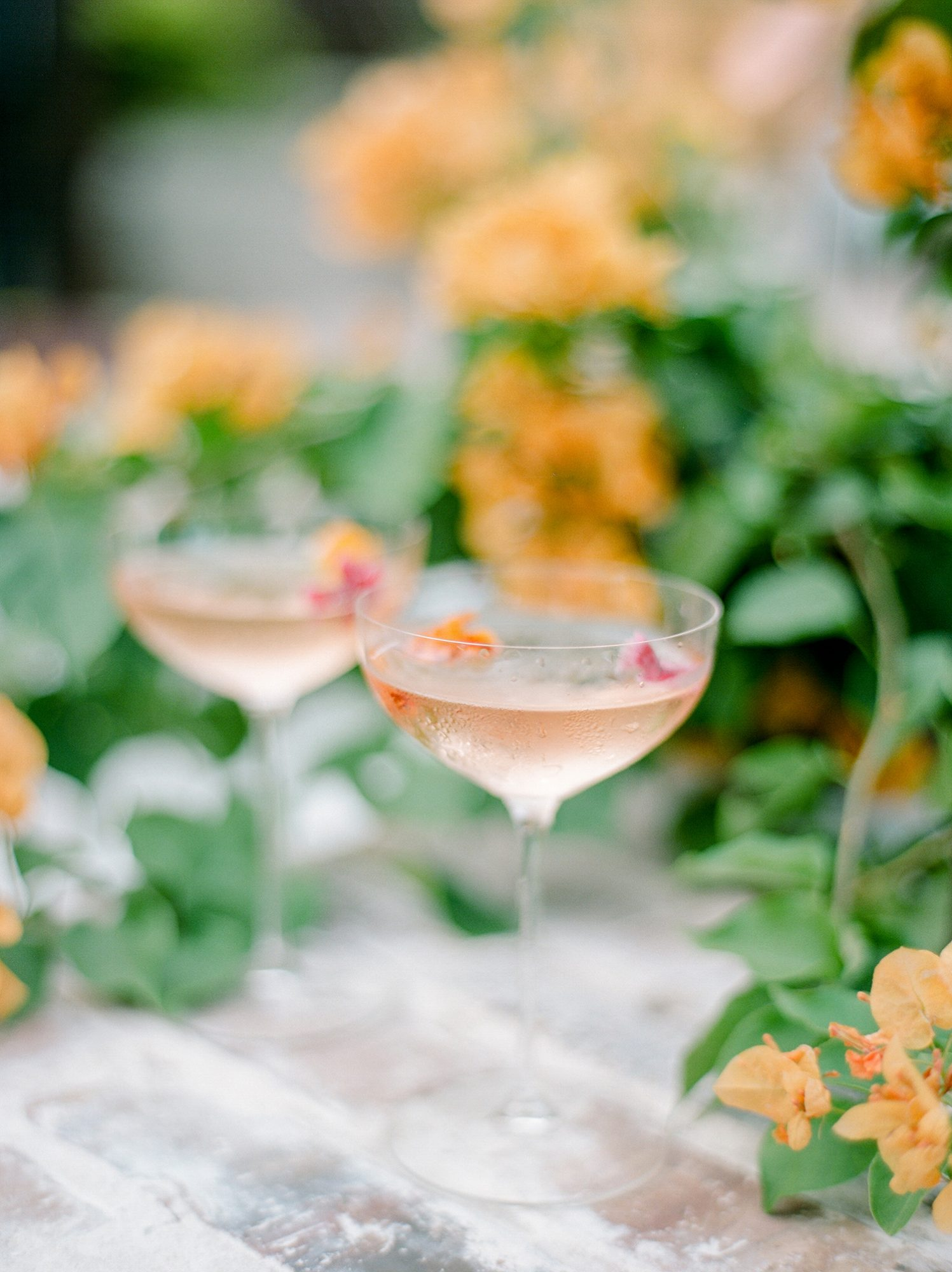 edible flowers in rose cocktails