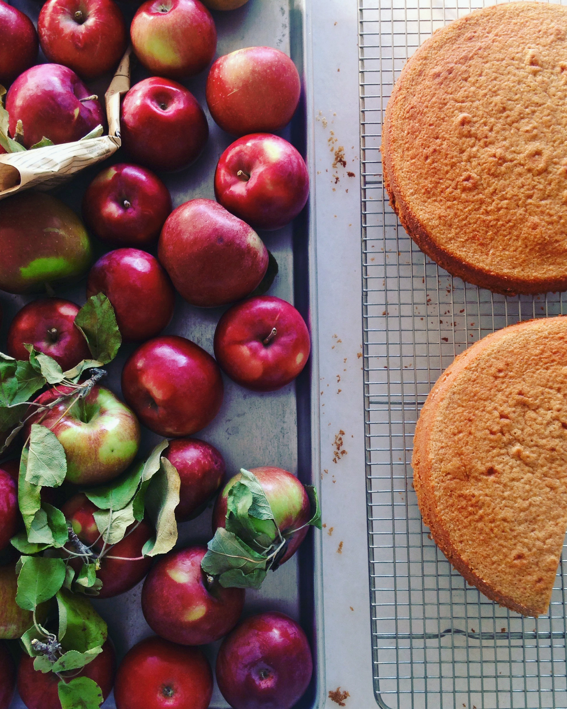 apples-and-cake-4-1015.jpg