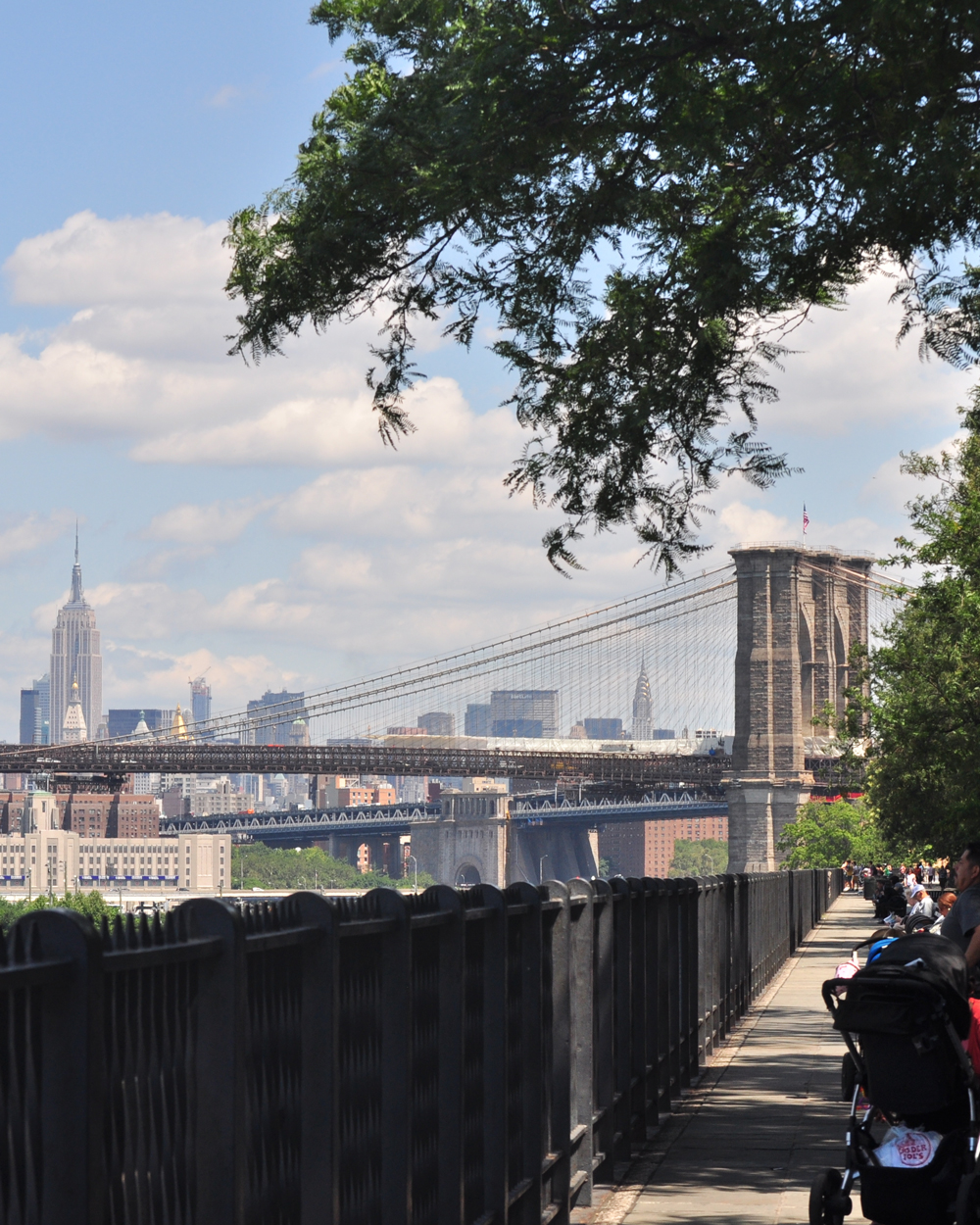 nyc-proposal-spots-brooklyn-heights-promenade-0316.jpg