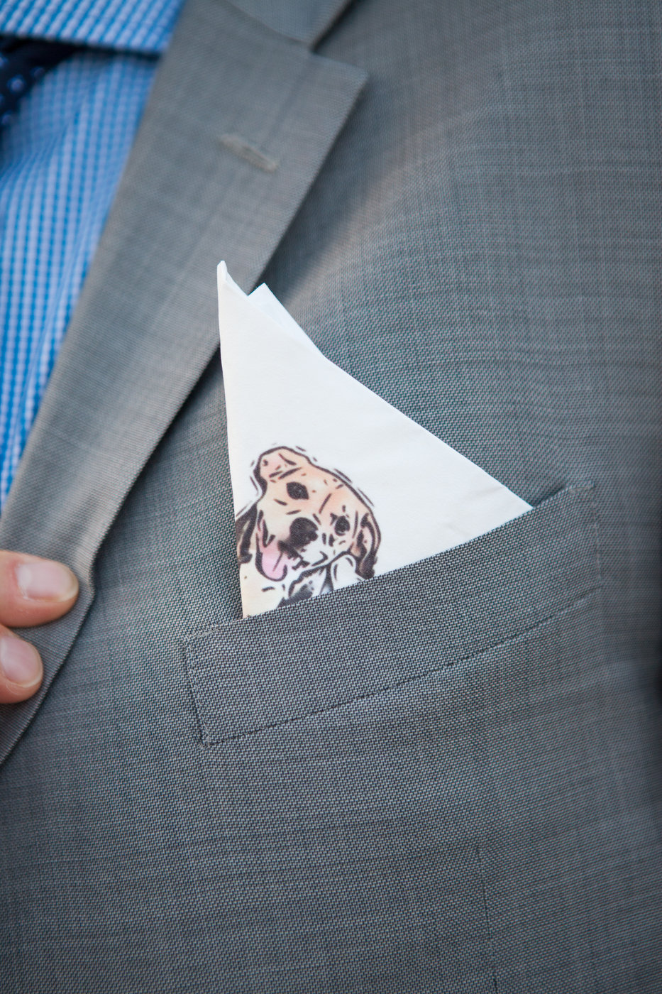 dog pocket square