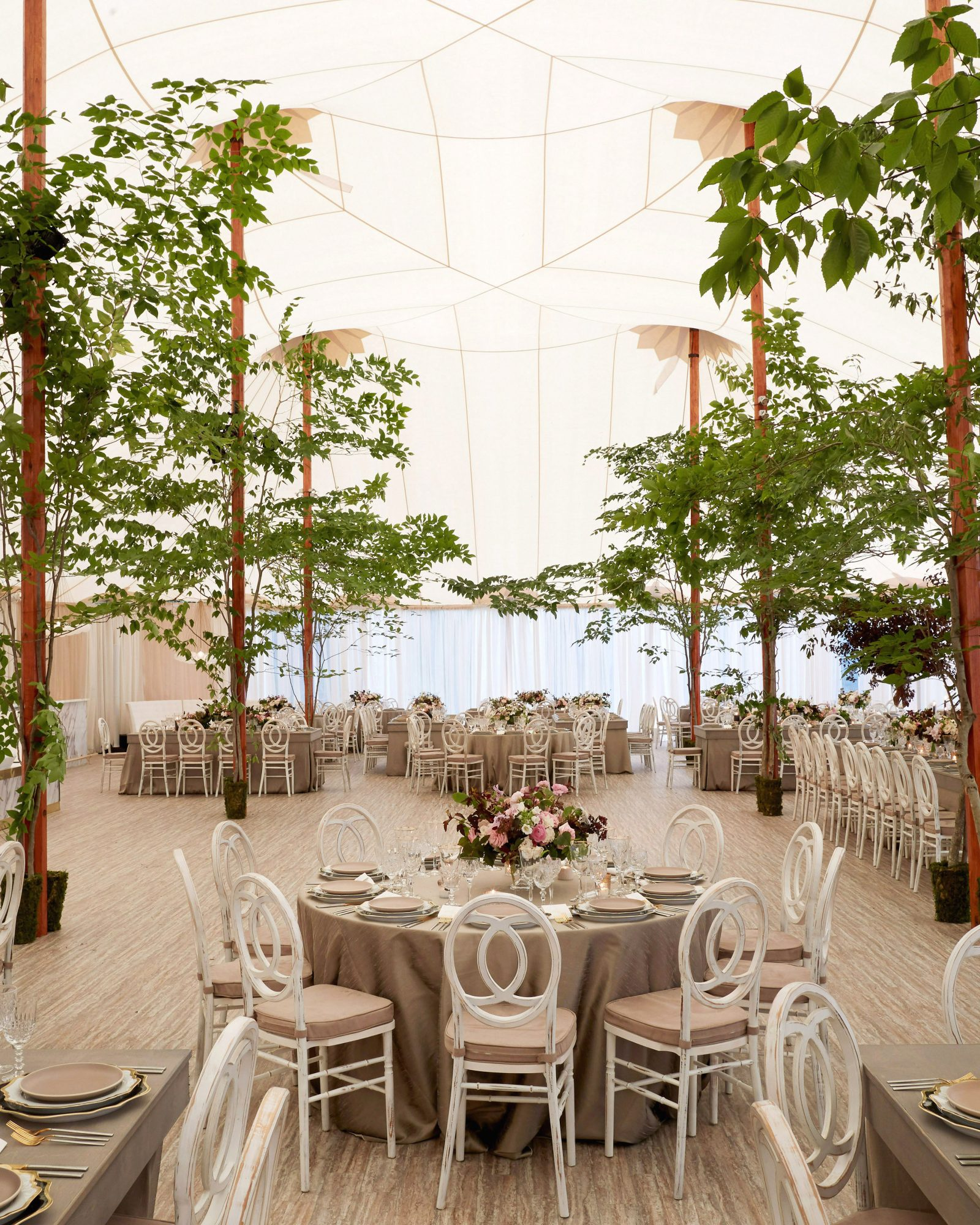 joyann jeremy wedding tent trees
