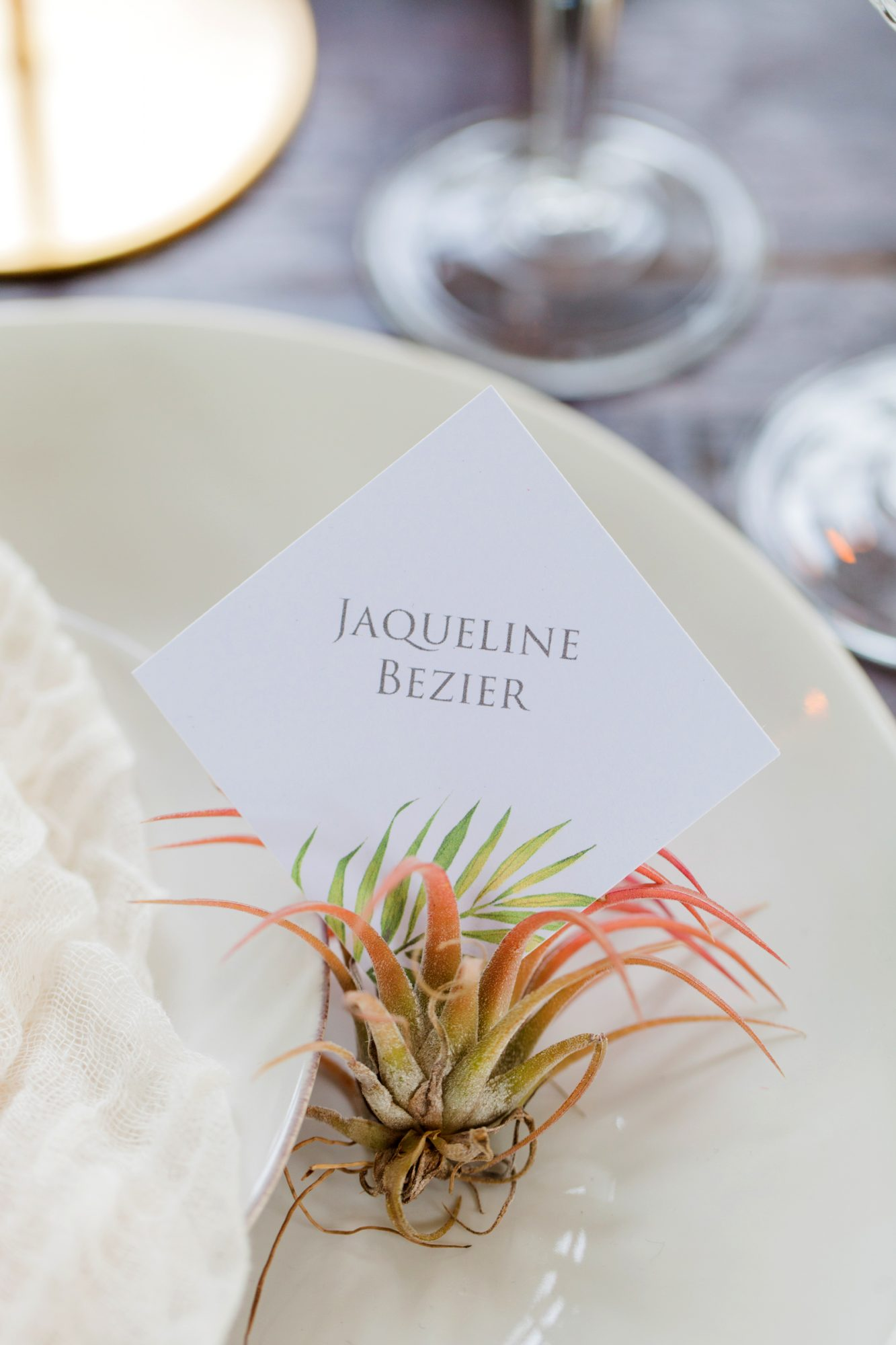 air plant place card holder