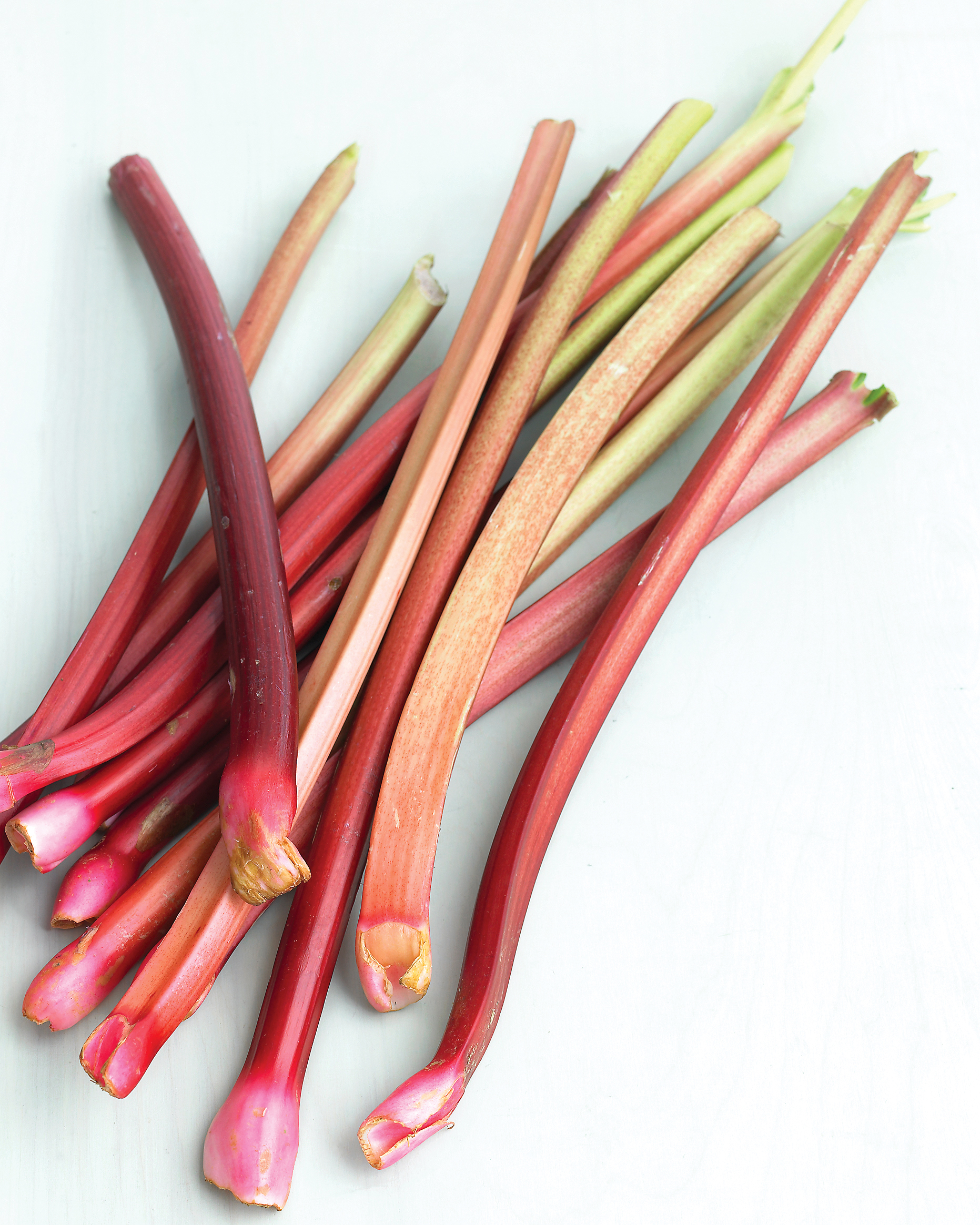 rhubarb bunch