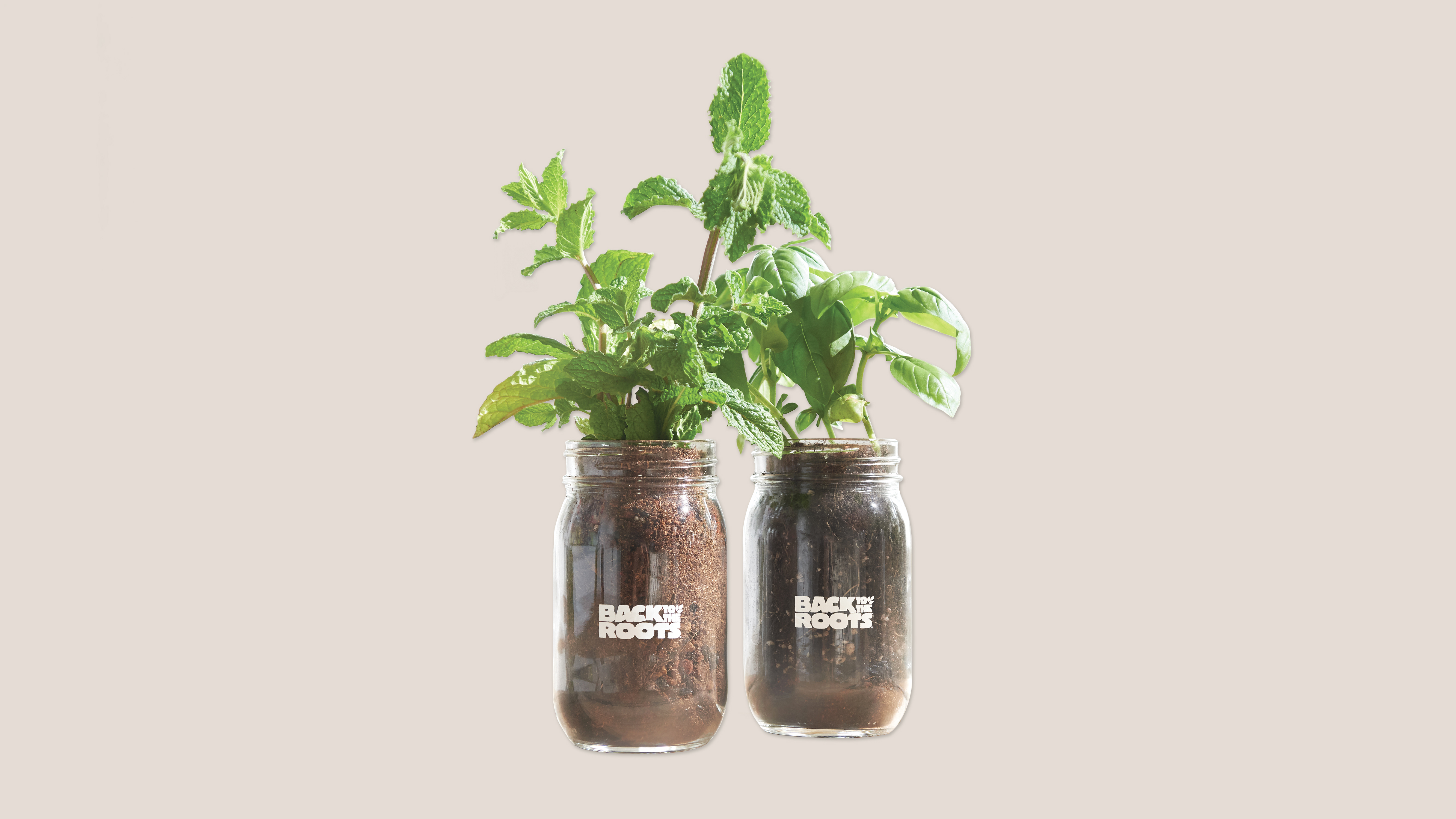 back to roots planter jars