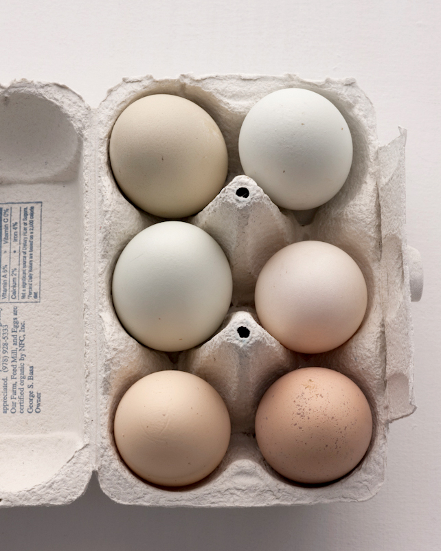 The 5 Things You Need to Know When Buying Eggs