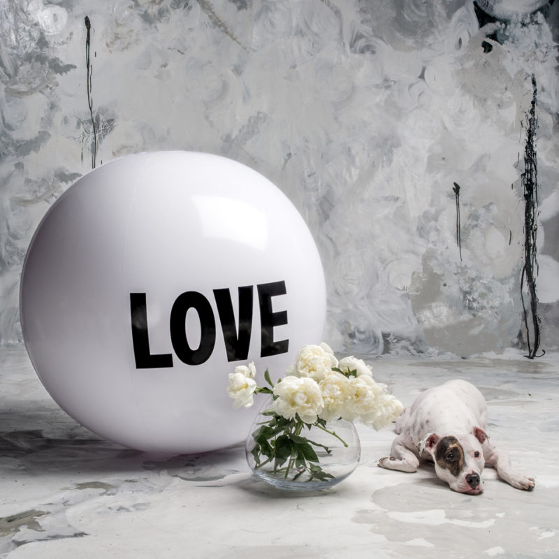 Big Love Ball Unexpected Registry Picks Darcy's Diary