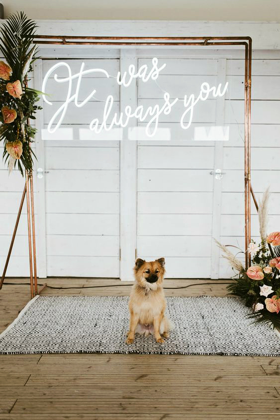 it was always you neon sign on ceremony arch with dog