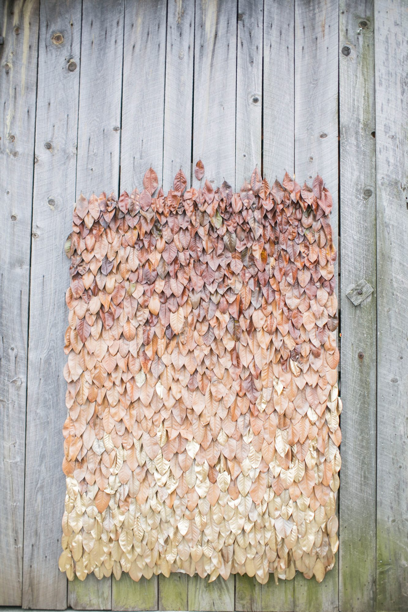 Ombre Leaf Backdrop