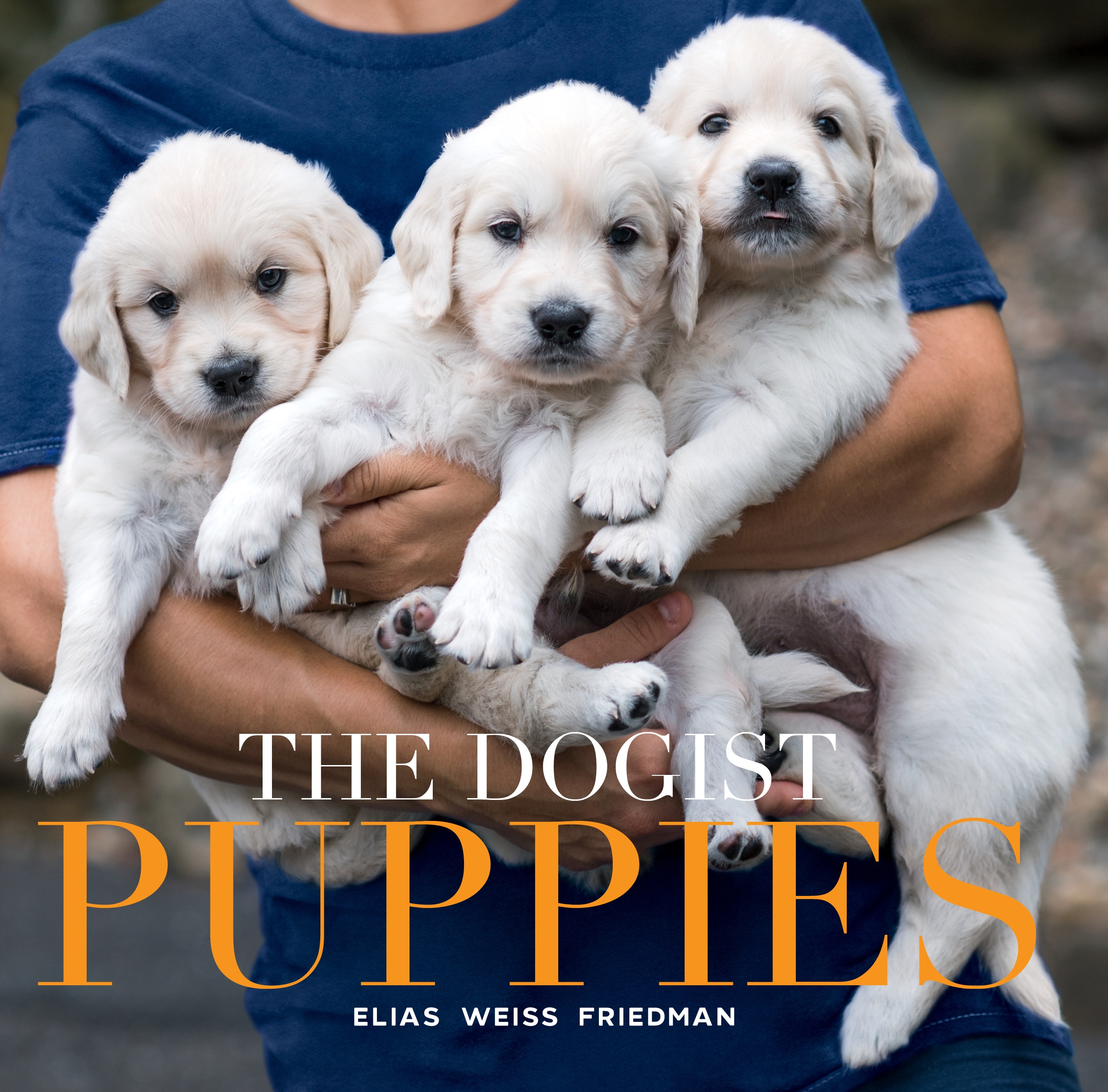 The Cover of The Dogist Puppies
