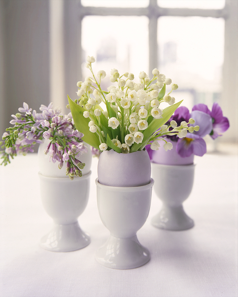 Flower Arrangements in Eggshells
