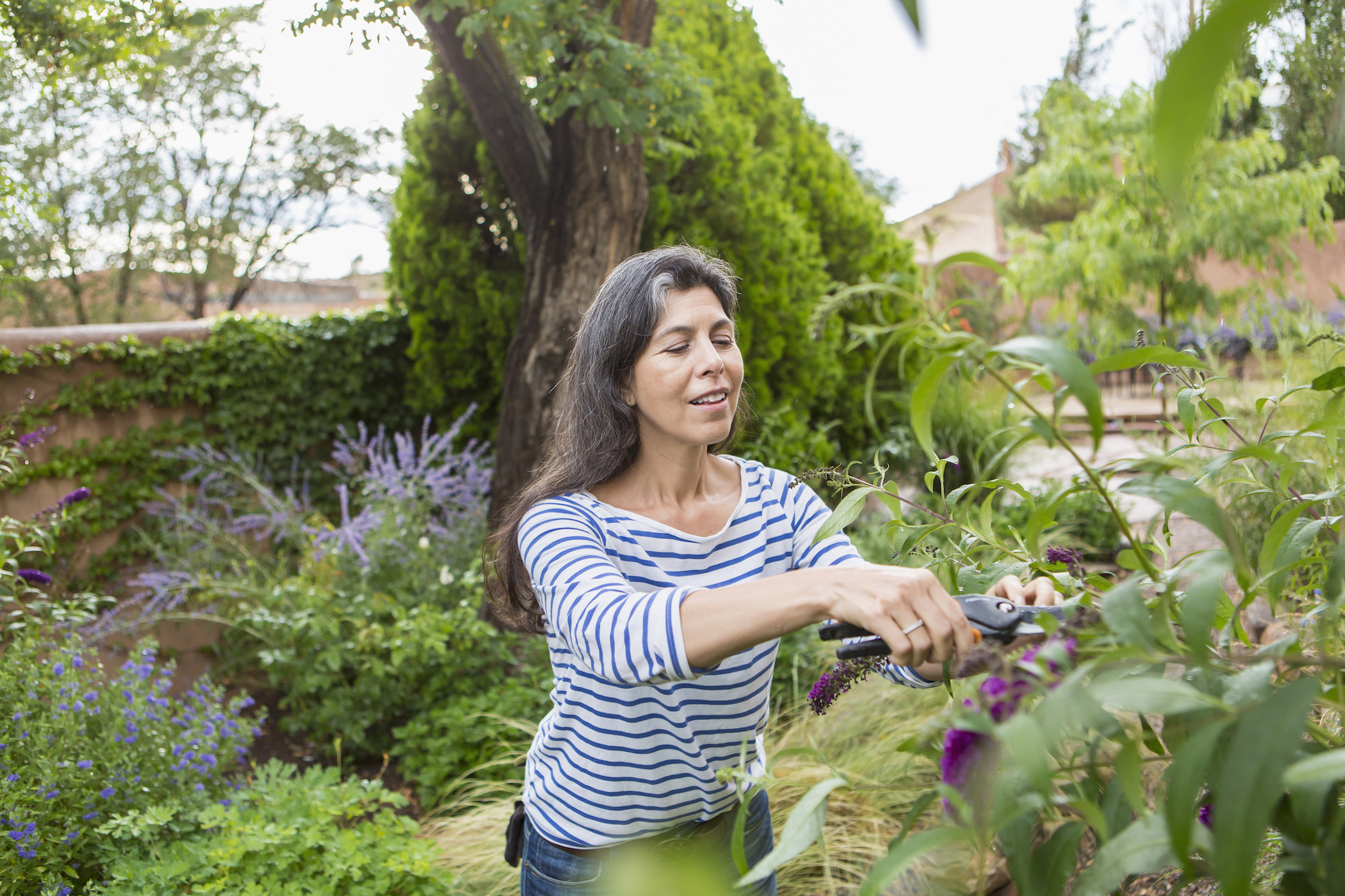A woman prunes plants in her garden.