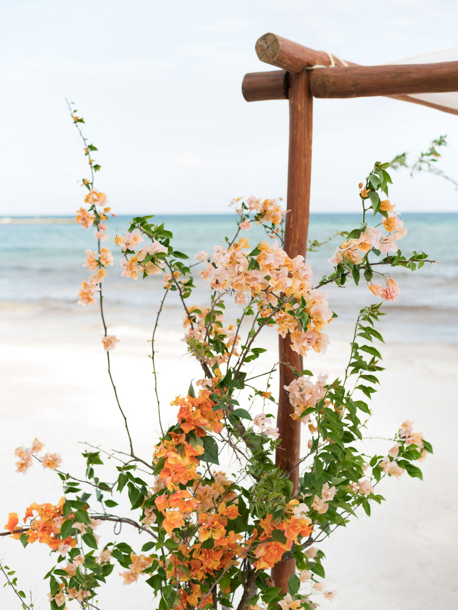 ariel trevor wedding tulum mexico beach chuppah bouganvillea