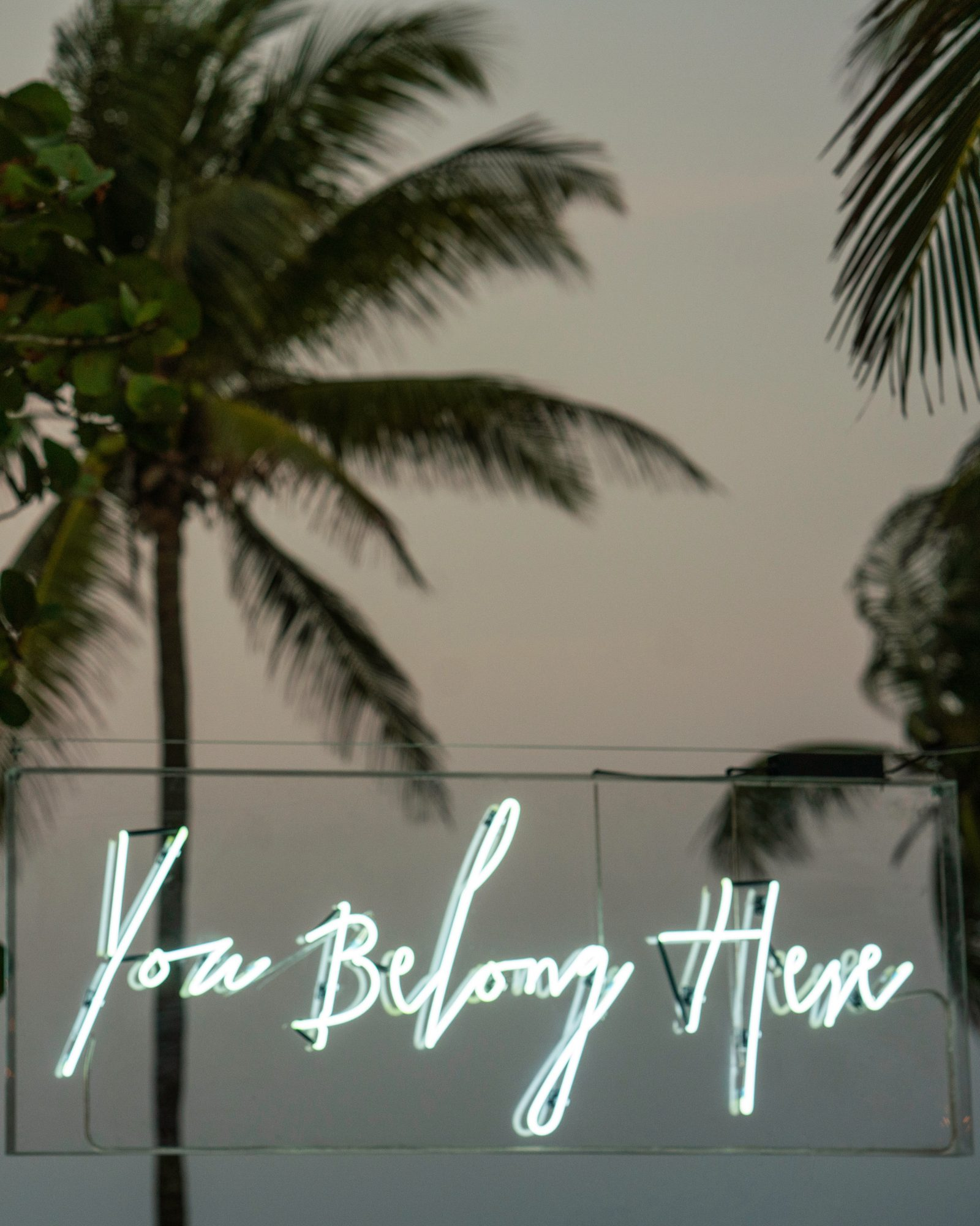 ariel trevor wedding tulum mexico neon sign