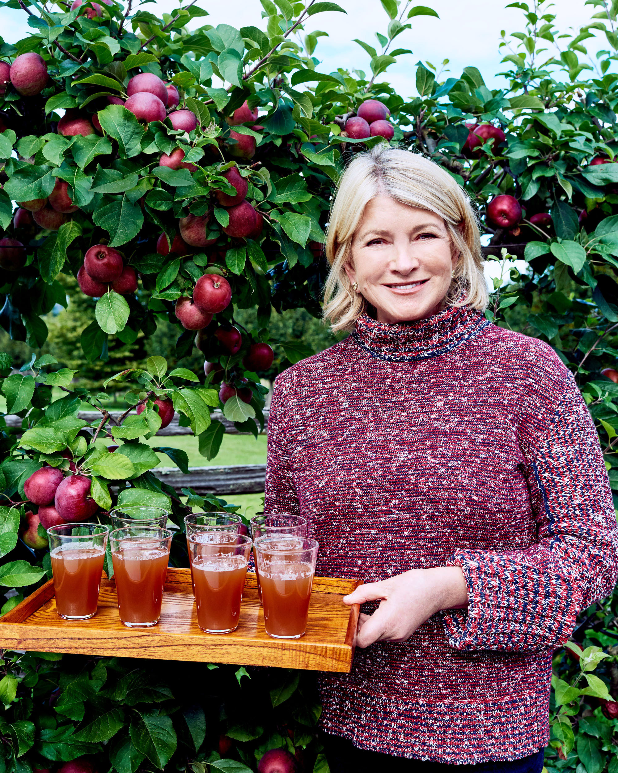 martha stewart glasses of apple cider on tray in front of apple trees
