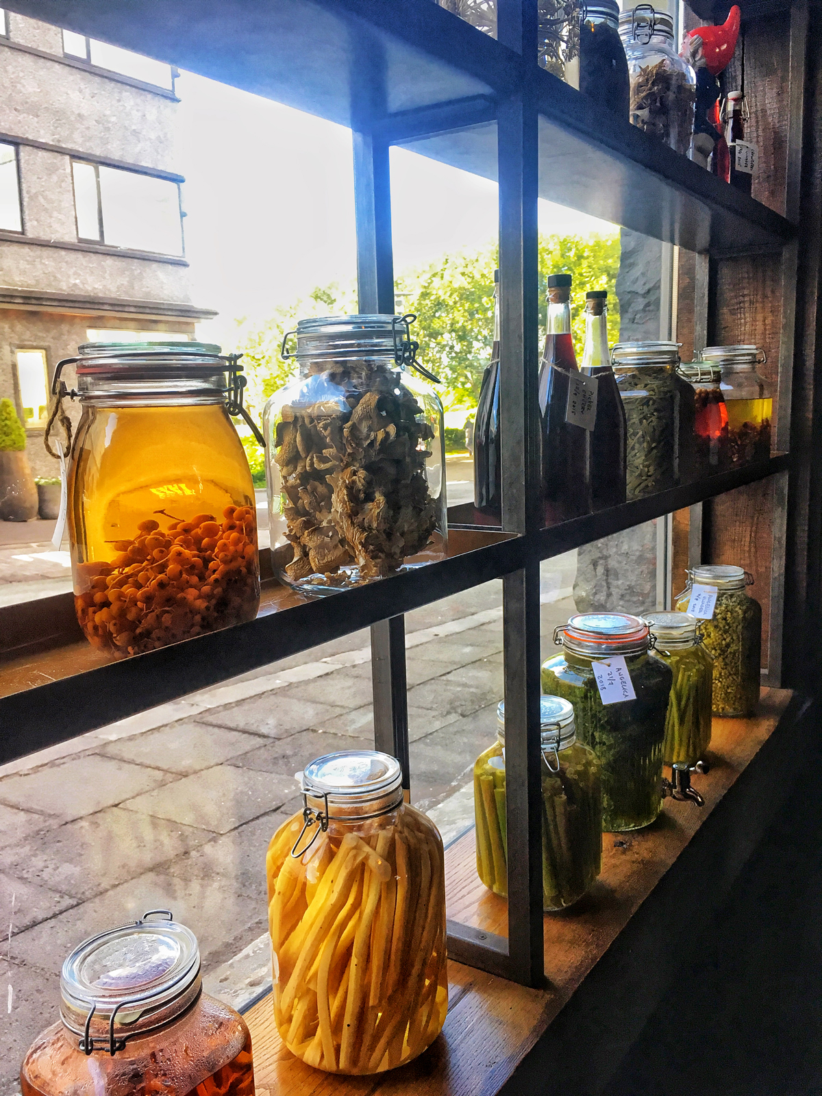 fermented vegetables and herbs displayed in window