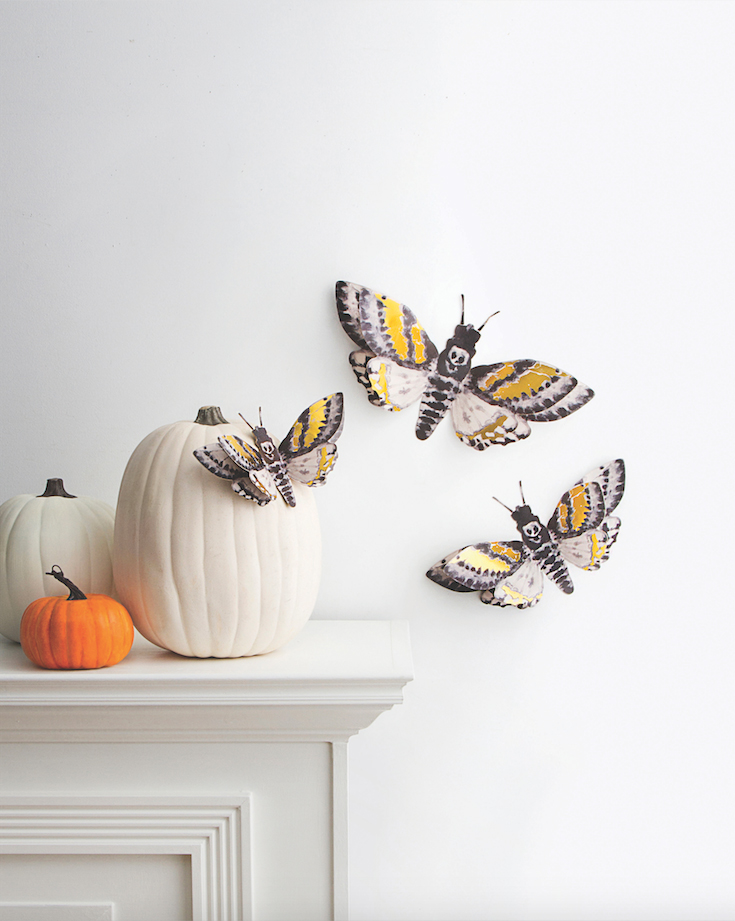 halloween moth wall decor
