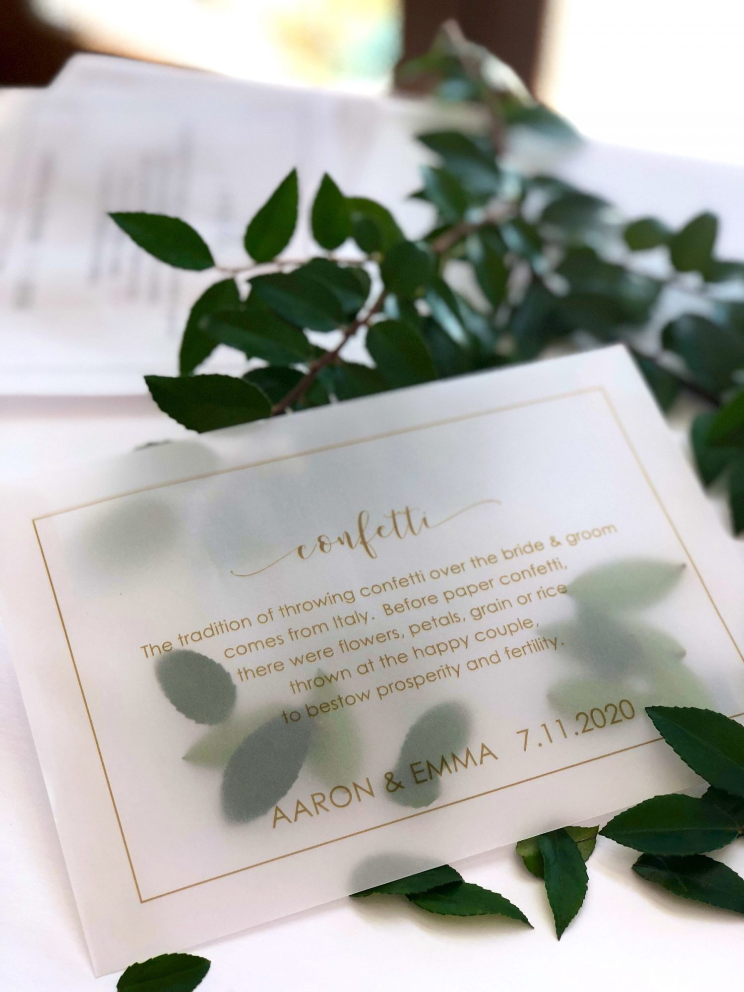 vellum confetti packet with plant on table