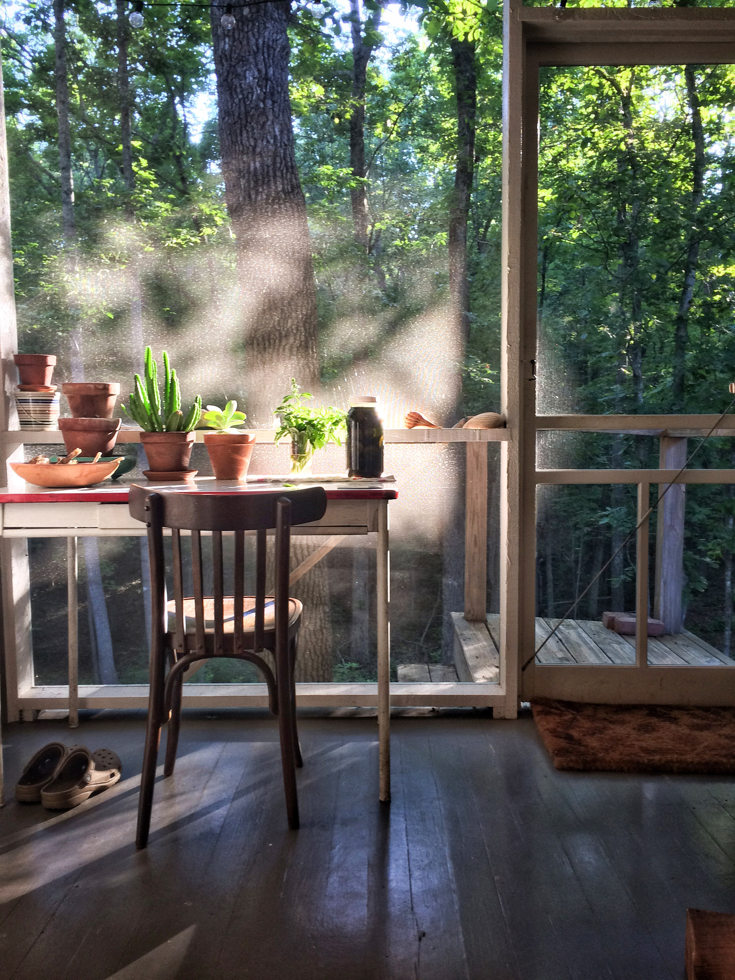 desk with plants in screened in porch wooded area