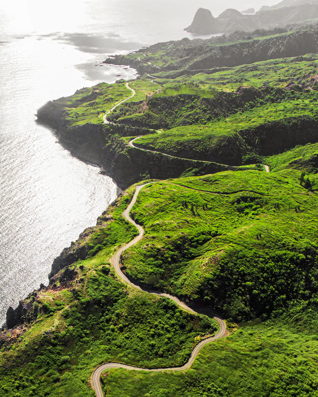 hawaii experience overhead view of lush green coast line