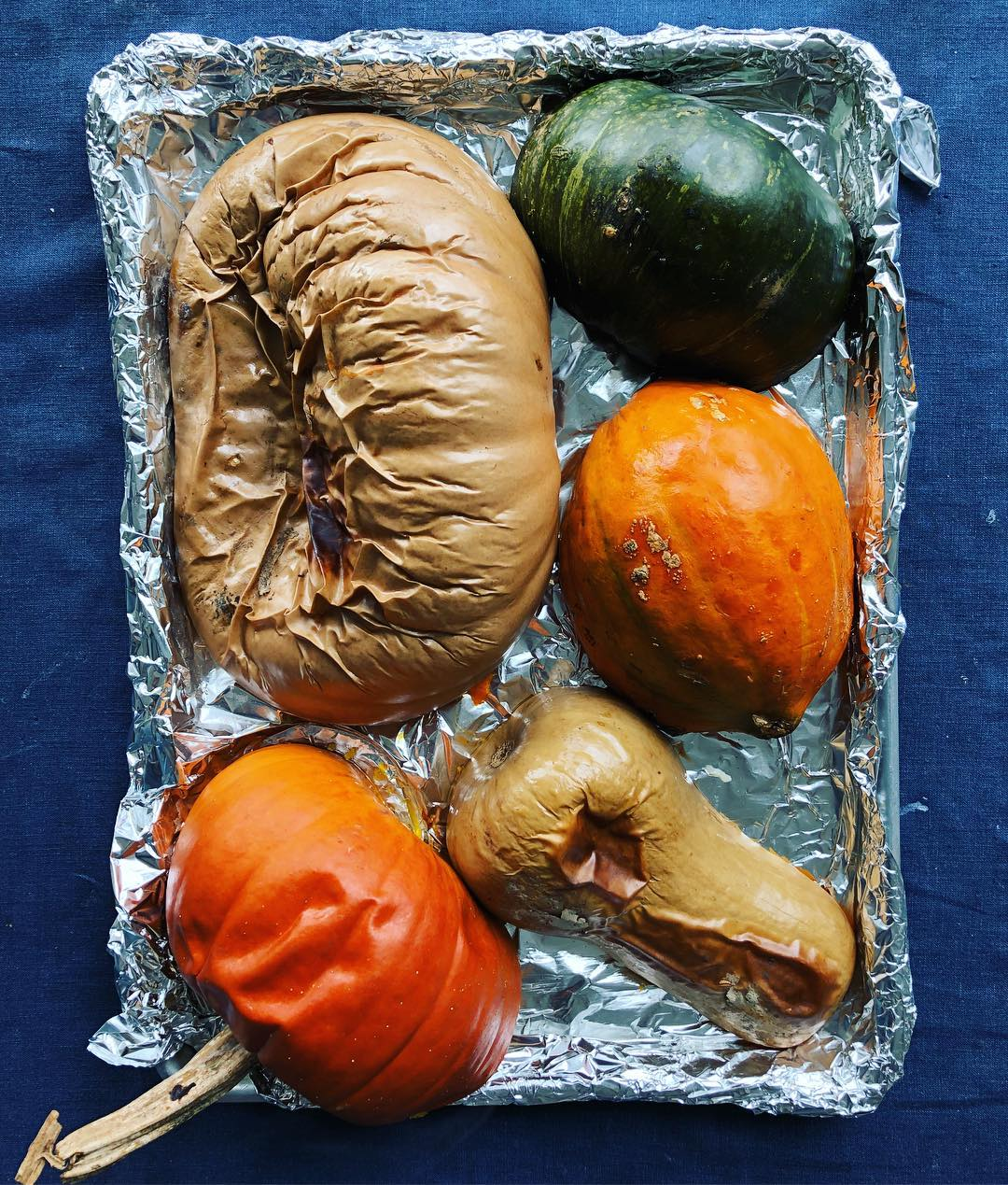roasted pumpkins and squashes