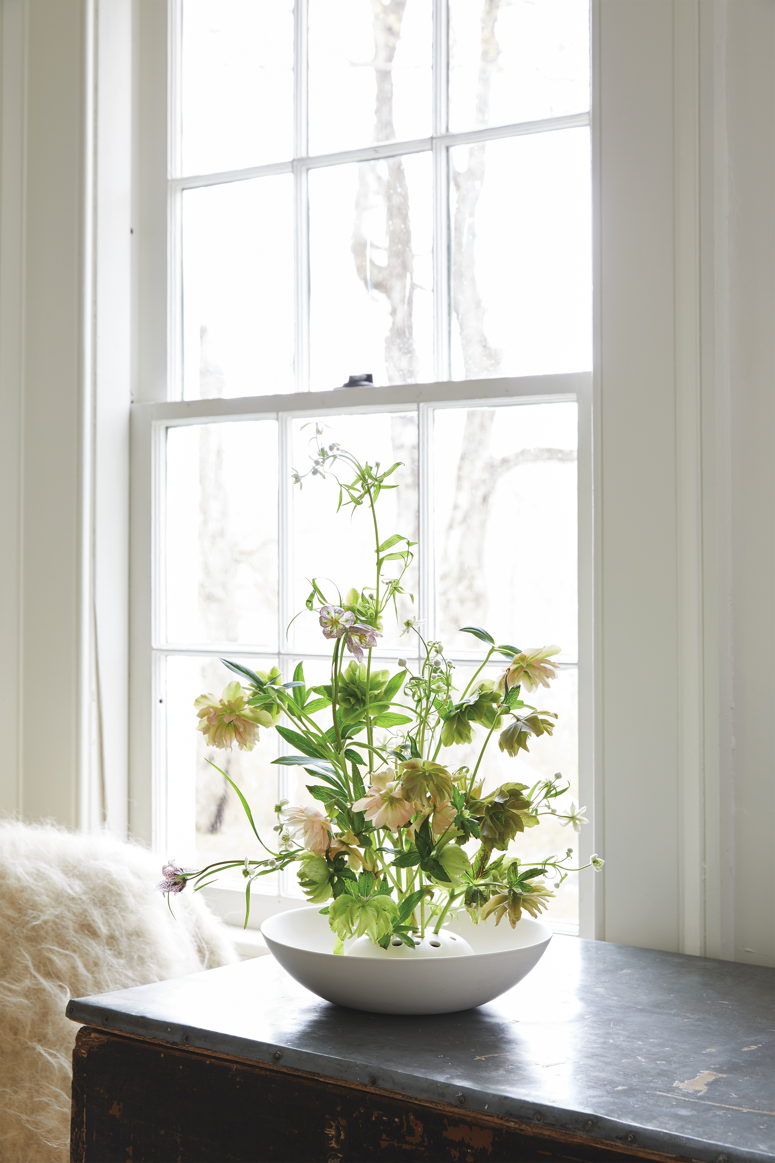 yellow white flowers in frog vase with natural light