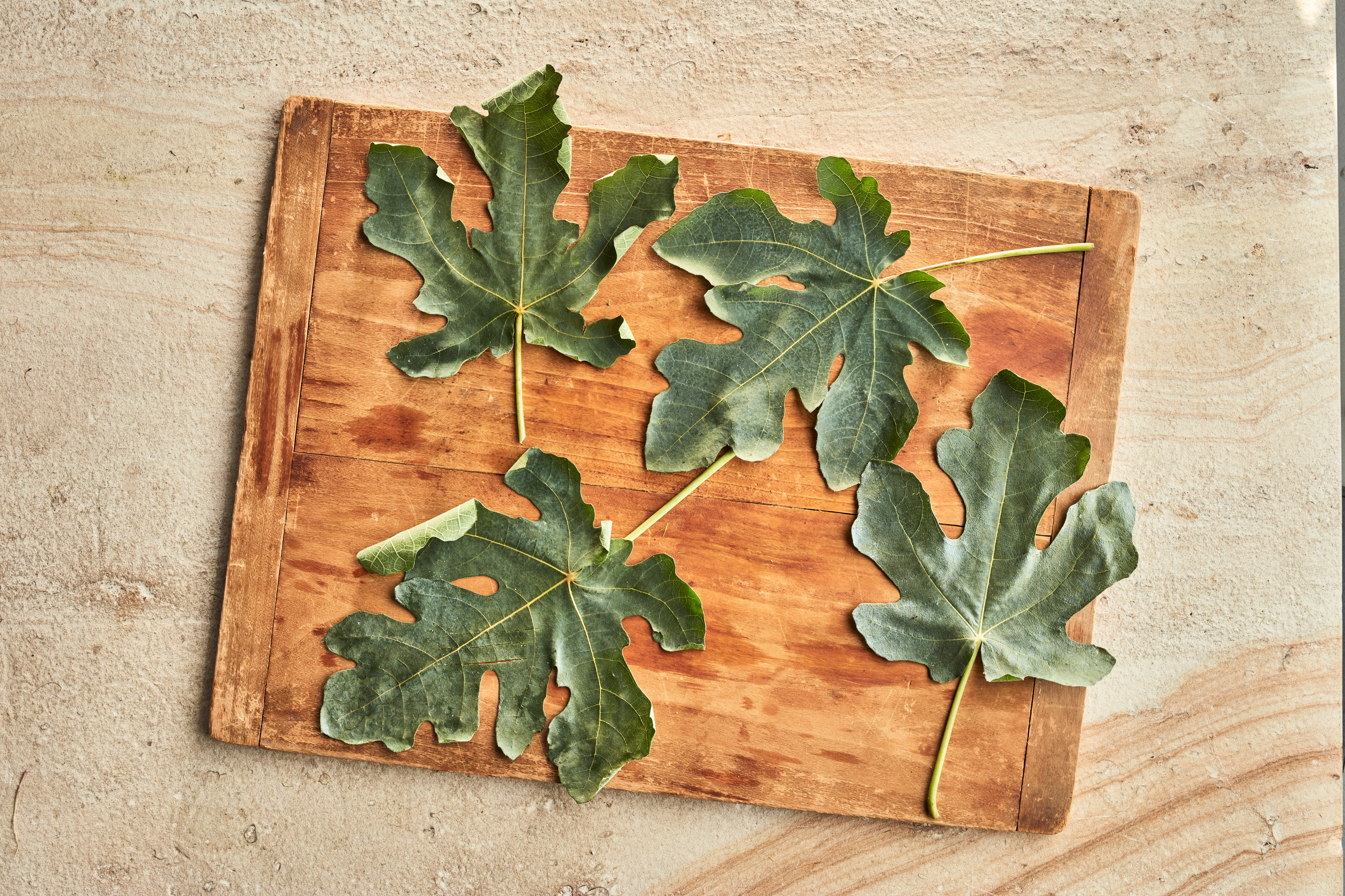 serving board with leaves