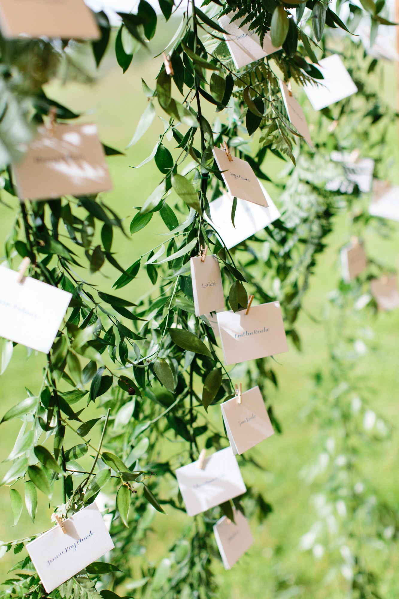 molly ed wedding hanging escort cards
