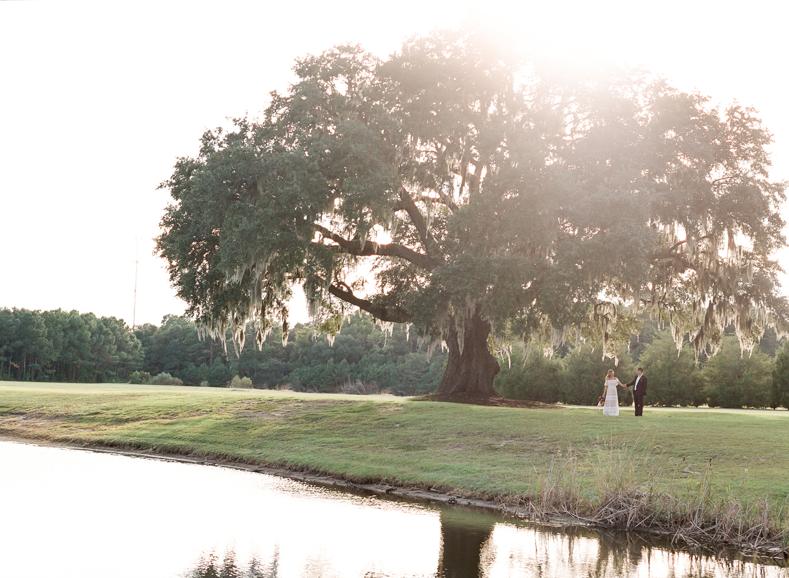 Couple stands in the distance under large tree by water