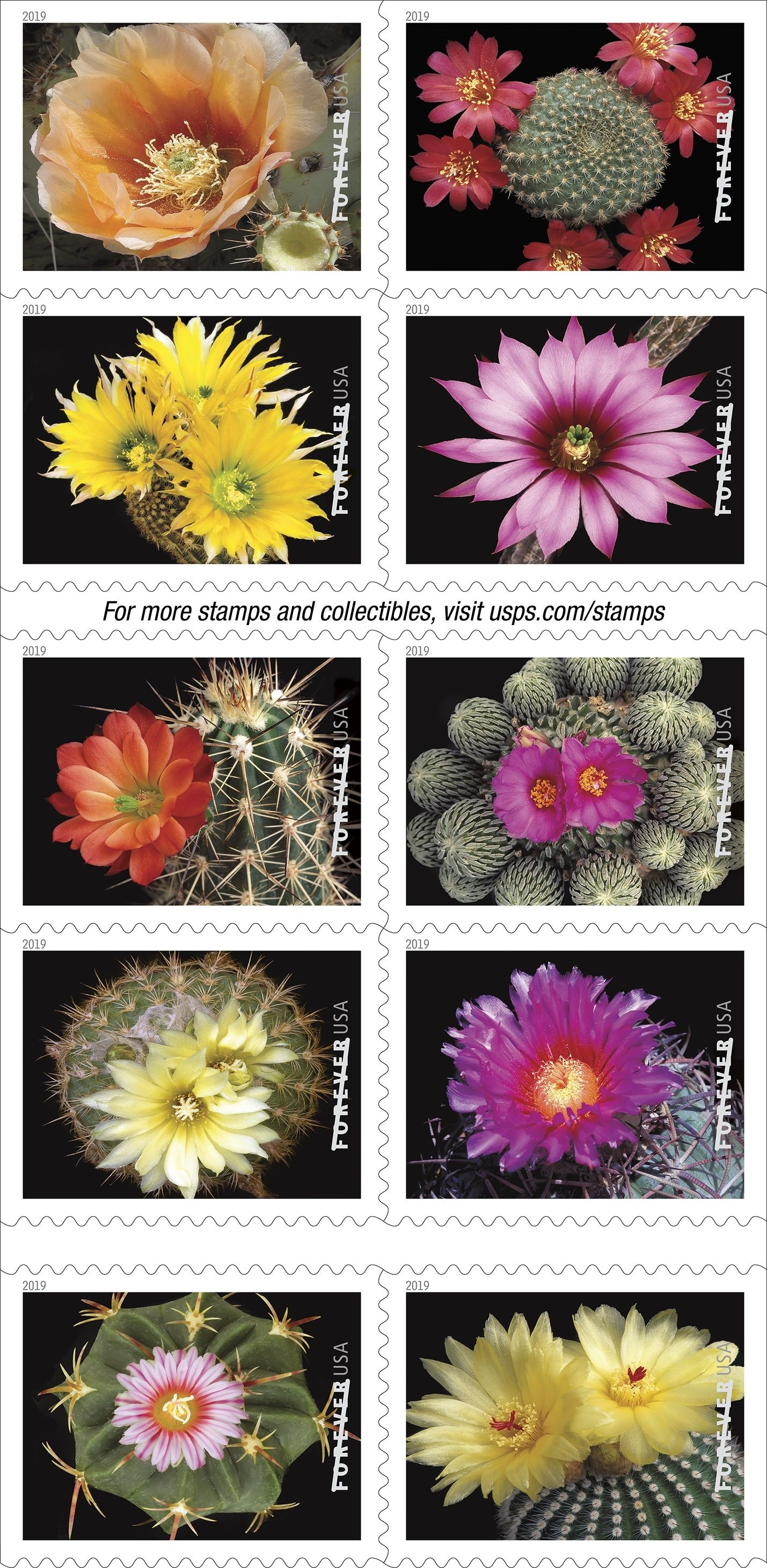 USPS-cacti-stamps