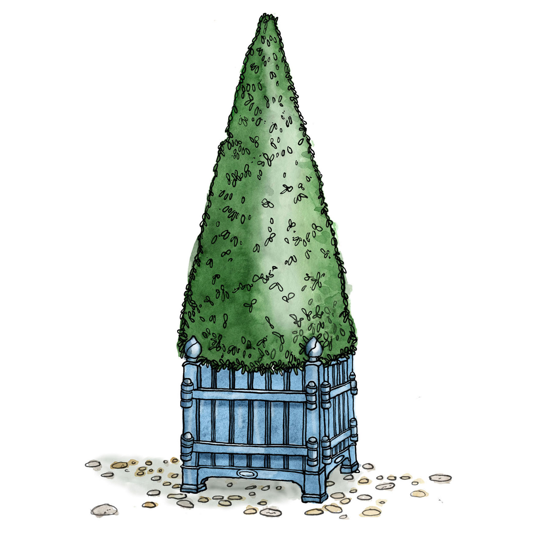 illustration of a potted topiary shaped as a cone