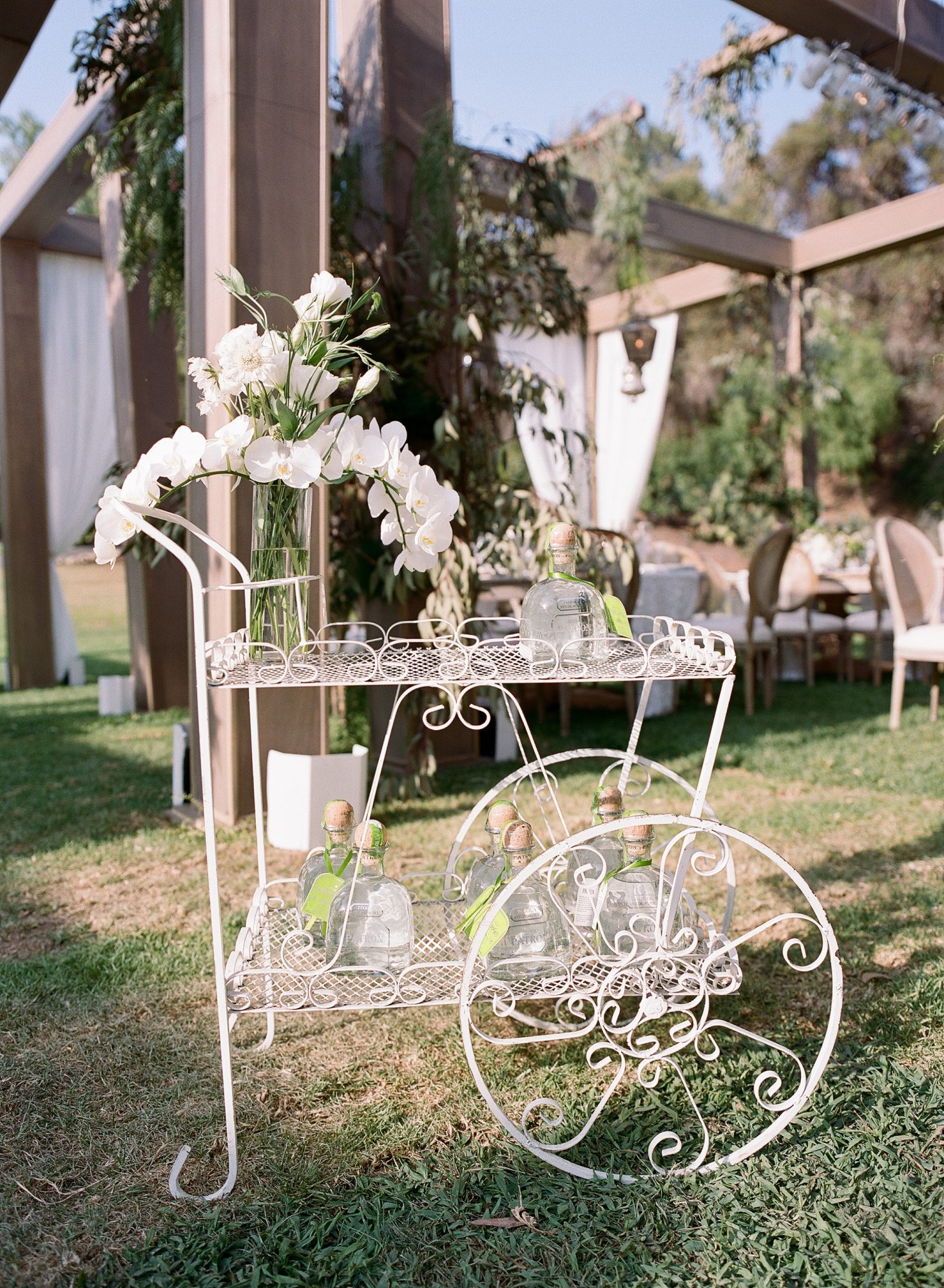ashlie adam alpert wedding tequila cart